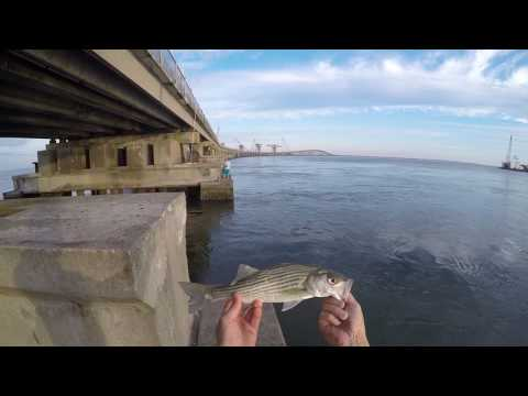 Fishing At Oregon Inlet Bridge