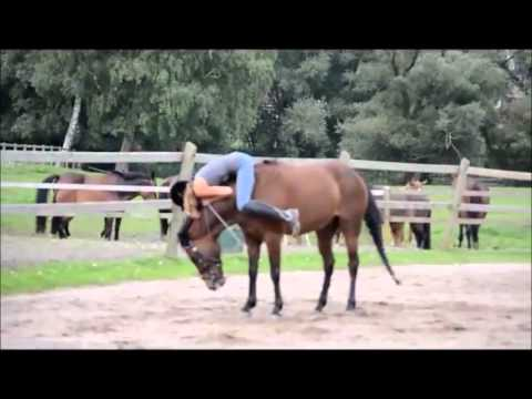 Some of the WORST falls of a horse !!