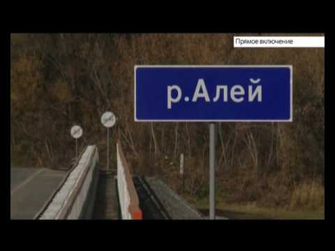 В Шипуновском районе завершили строительство моста. Прямое включение