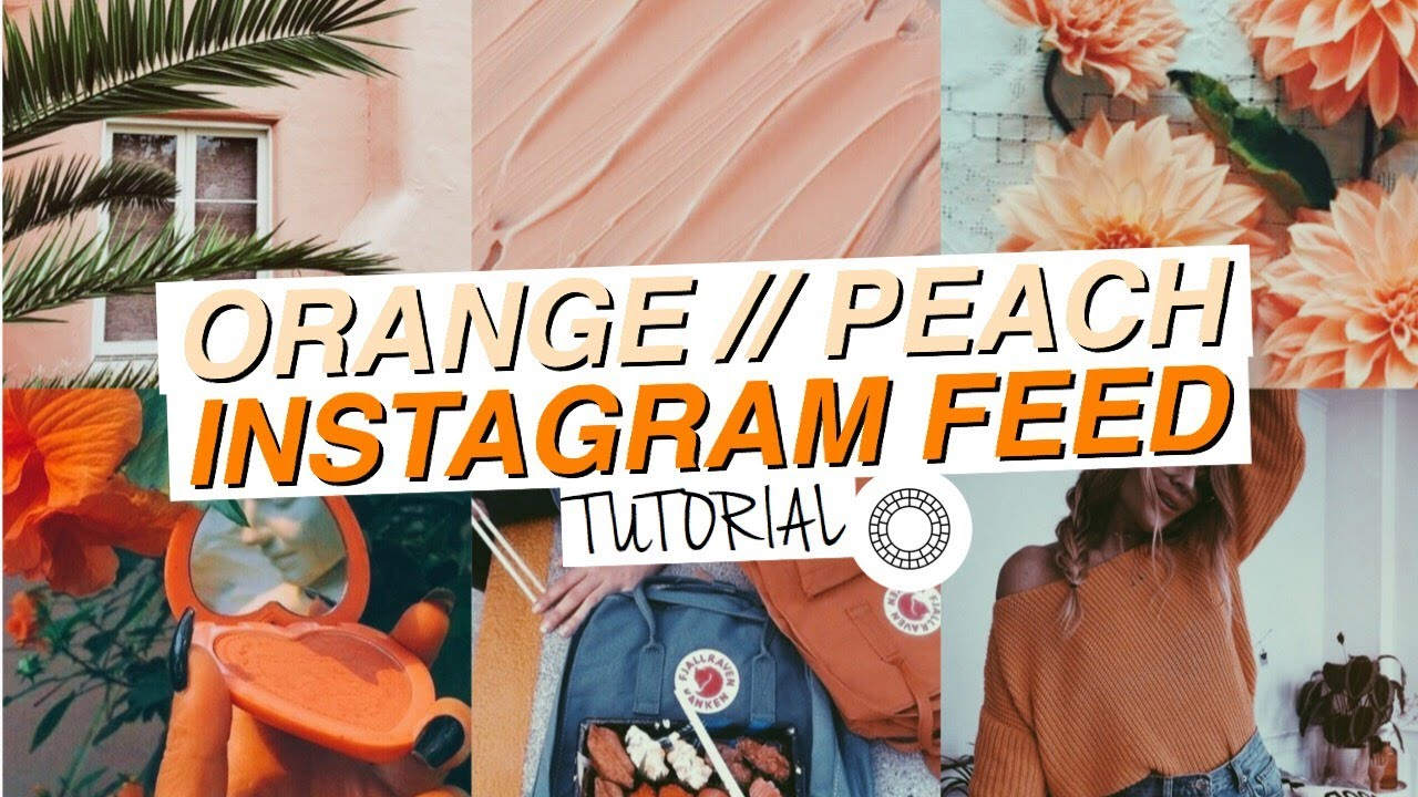 how to live instagram feed