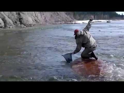 Northwest Territories Fly Fishing
