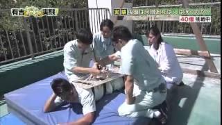 有吉弘行(ありよし ひろいき)、宮川大輔(みやがわ だいすけ)、ビビ...