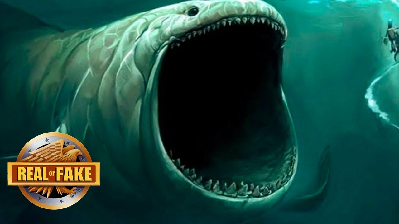 The mysterious bloop creature real or fake youtube for Do fish make noise