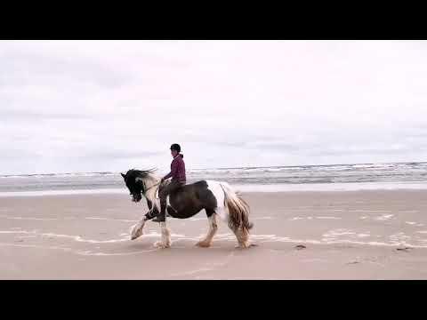 Megan & Agnes on the beach!