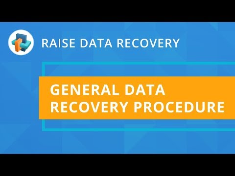 Raise Data Recovery: General recovery procedure [SysDev Laboratories]