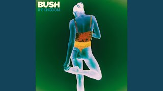 Bush - Words Are Not Impediments Video