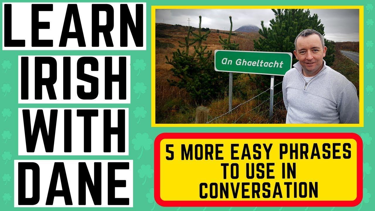 221 Online Irish Lessons