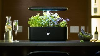 The smart garden of the future thumbnail