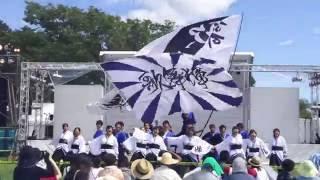 秋田大学よさこいサークル よさとせ歌舞輝さん、潟上市の天王グリーンラ...