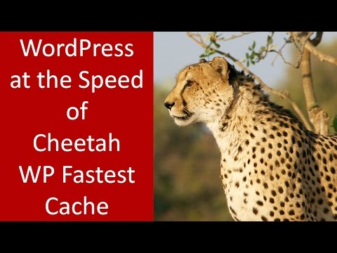 How to use WP Fastest Cache for WordPress Optimization