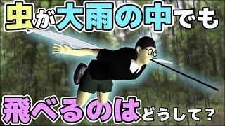 【物理エンジン】小さな虫が大雨の中でも飛べるのはどうして? thumbnail