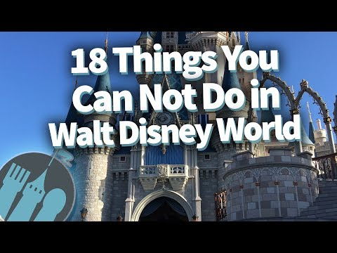 Digital Riggs - 18 Things You Can't Do at Disney World