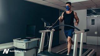 Síla svalů, fyzická síla a vytrvalost u vegetariánů