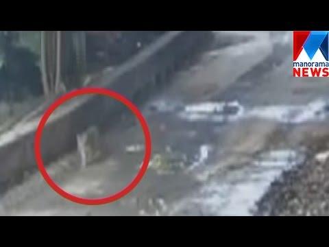 Camera trap near Sabarimala gets tiger footage | Manorama News