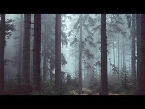 Fourtwnty - puisi alam (lyric video)