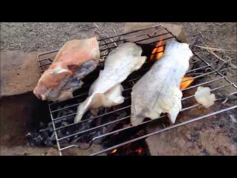 Catch And Cook Catfish *old Video*