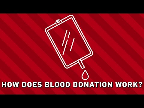 How Does Blood Donation Work? - Brit Lab