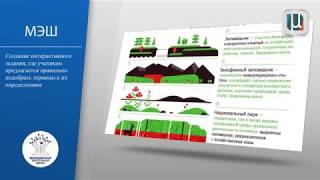 Сценарий урока, интерактивное задание «Правильное употребление терминов»