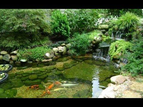 Декоративный пруд в саду своими руками фото