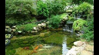 Пруд своими руками 💁🏻♀️ Красивый пруд в саду
