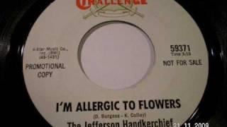 JEFFERSON HANDKERCHIEF - I'm allergic to flowers