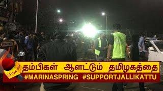 தம்பிகள் ஆளட்டும் தமிழகத்தை! #MarinaSpring