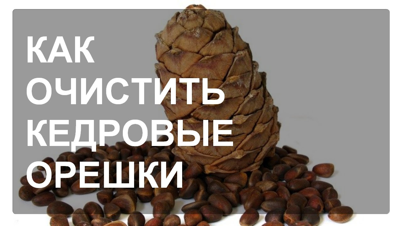 Купить продажа кедровых орехов оптом и в розницу: актуальные объявления от продавцов украины с прямыми контактами и по выгодной цене.