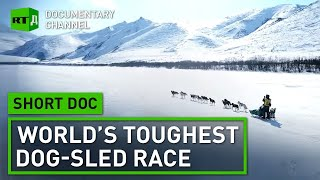 Beringia: World's Toughest Dog-Sled Race | Short Doc