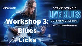 Live Blues Guitar Workshop #3: Blues Licks