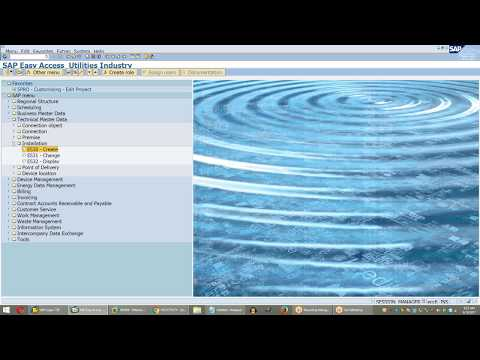 SAP ISU Device installation and Move in document processing