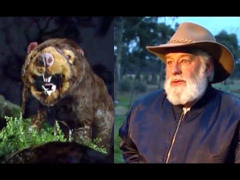 Marsupial Lion Sightings