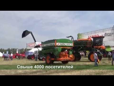 День воронежского поля 2019 (пос. Грушевая поляна, Острогожский район)