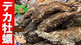 黒門市場で一番デカい牡蠣を買い食いしてみた!