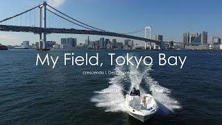 My Field, Tokyo Bay - ドローンで空撮した東京湾