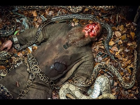 Blood Falling Wallpaper Vikings S04e15 Ragnar S Death Pit Of Snakes Youtube