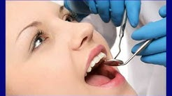 #1 SEO Services Consultant for Dental Labs & Dentists in Jacksonville FL