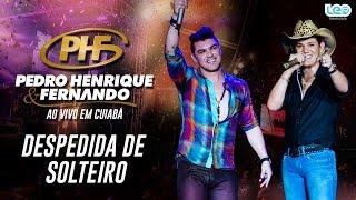 Despedida de Solteiro - Pedro Henrique e Fernando (Ao Vivo em Cuiabá)