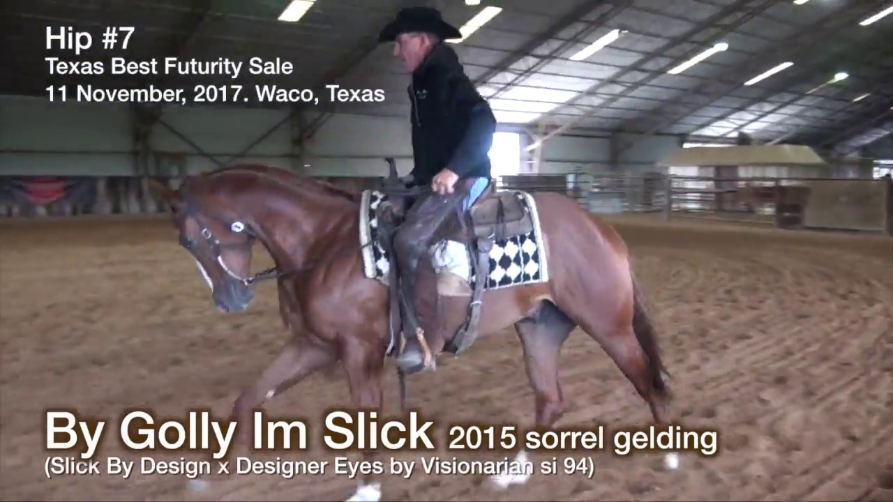 By Golly Im Slick By Slick By Design 2015 Sorrel Gelding Youtube