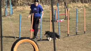 Repeat youtube video parcours agility claira