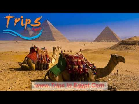 2 day trip to Cairo & Luxor from Port Said    Trips In Egypt