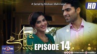 Yeh Pyar Hai | EpIsode 14 | TV One Classics Drama