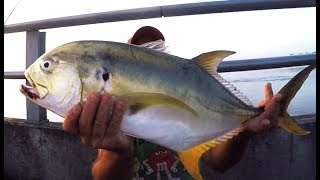 Fishing a New Saltwater Location From Shore (How To Catch Fish)