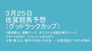 平成30年3月25日佐賀競馬予想(グッドラックカップ) thumbnail