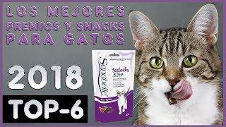 Los mejores 🔥 Premios y Snacks para Gatos 😸 TOP-6 🔥