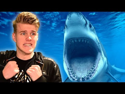 ATTACKED BY A SHARK! (FISHING IN VR) |