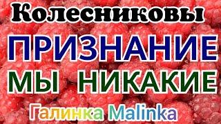 Колесниковы /Признание /Мы никакие /Обзор Влогов /