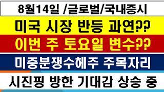 [세계 + 국내 증시 현황 및 전략] 8월14일 시진핑…