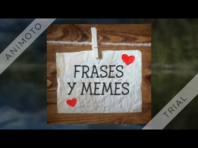 frases y memes