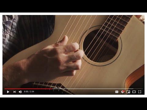 S-12 Symphony Harp Guitar Natural