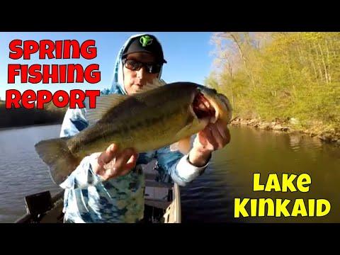 Lake Kinkaid Fishing Report April 24th 2020